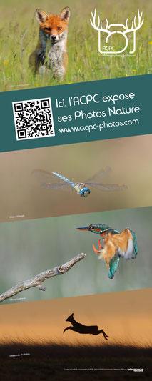 Dans le 1000 Communication - Agence graphique en Loir-et-Cher - Création de flyers, plaquettes, affiches, cartes de visite, banderoles - Kakémono de l'ACPC