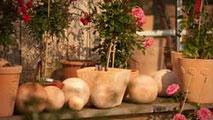 Accessoires die Ihren Garten bereichern und Ihnen Freude bereiten