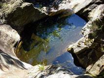 Baignoire naturelle dans le lit du Gardon à Saint-Frézal de Ventalon près du gite de liou