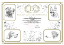 Franyo Freiherr von Hohenzollern DCM frei DCM free
