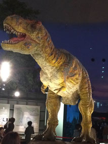 恐竜博物館!
