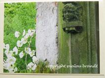 kleiner Engel, Friedhof weiße Blüten