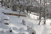 Winterlandschaft mit Bienenstöcken