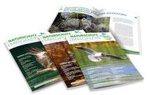 Broschueren-naturschutzinitiative-ev-grafik-thielen-logodesign-webdesign-grafikdesign-bilddesign