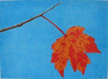 Dessin crayons de couleur feuille d'érable orange et rouge