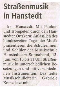 Winsener Anzeiger 09.06.2009