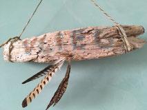 www.ronaldosephius.nl veren drijfhout wol vlieg vrijheid bewust groeien vanuit innerlijke kracht