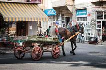 Transporte mit der Pferdekarre Prinzeninsel Büyükada