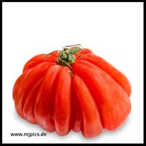 montserrat-fleisch-tomate-weisser-hintergrund