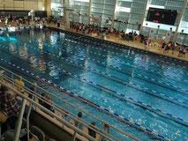 33. Dortmunder Schwimmfest