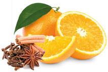 Orange-Ingwer Punsch Sirup - Fa. Gabriele Knoflach-Eitzinger