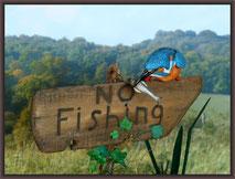 Airfix 1:1 Kingfisher
