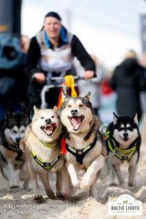 Hundeschlittengespann am Start © ExperiArts Ebtertainment - Stefan Stuhr