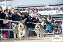 Rennen direkt zwischen Zuschauermengen © ExperiArts Entertainment - Thomas Ix