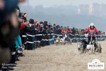 Hinter schnellen Hunden an tausenden Zuschauern vorbei © ExperiArts Entertainment - Thomas Ix