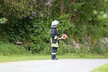 Roter Hahn I Übung
