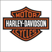 Grafica personalizzata per stampa maglietta con logo Harley Davidson
