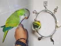 joya-artistica-con-pelo-animal-mi-miga-pulsera-cuero-plata-ley-charms-corazon-grabado-jaula-palmera-loro-perla-cristal-plumas-cotorra-argentina-jerry