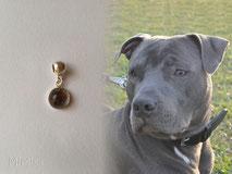 artistic-pet-hair-jewellery-mi-miga-pet-loss-memorial-charm-for-pandora-sterling-silver-bezel-cup-glass-cabochon-dog-narco