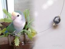 joya-collar-artesano-personalizado-acero-plata-perlas-cristal-plumas-agaporni-chirry