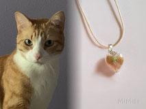 joya-artistica-con-pelo-animal-mi-miga-collar-cuero-plata-ley-perla-cristal-corazon-tupi-swarovski-gato-neo
