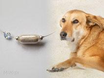 joya-artistica-con-pelo-animal-mi-miga-collar-hilo-acero-corazon-swarovski-perla-cristal-perro-rousse