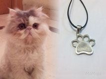 jewel-silver-artisan-paw-print-pendant-design-mi-miga-personalized-hair-cat-