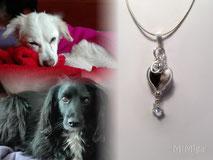joya-artistica-memoria-recuerdo-animal-mi-miga-collar-cuero-plata-ley-charms-iniciales-estrella-swarovski-perla-cristal-corazon-perros-chica-tizon