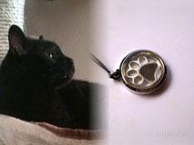 joya-recuerdo-medallon-acero-huella-artesana-plata-diseno-mi-miga-personalizada-pelo-animal-gato-rocco