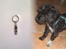 joya-artistica-memoria-recuerdo-con-pelo-animal-pendiente-aro-plata-ley-perla-cristal-perro-koko