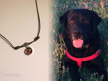 artistic-pet-hair-jewellery-mi-miga-memory-necklace-pendant-bezel-cup-sterling-silver-swarovski-crystals-glass-cabuchon-dog-thor