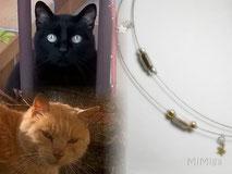 joya-artistica-memoria-recuerdo-con-pelo-animal-mi-miga-collar-memoria-recuerdo-acero-plata-ley-perlas-cristal-gatos-gollum-el-rubio