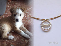 artistic-jewel-mi-miga-memory-necklace-sterling-silver-ring-glass-pearl-tube-pet-animal-hair-dog-crazy