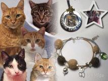 mi-miga-artistic-pet-hair-jewellery-bracelet-leather-silver-cat-hair-charms-necklace-steel--thor-mortimer-klaus-duende-ronnie-izka-amur