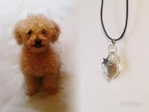 joya-artistica-memoria-recuerdo-con-pelo-animal-mi-miga-collar-cuero-plata-ley-charma-estrella-huella-perla-cristal-corazon-perro-peque