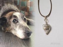 joya-artistica-memoria-recuerdo-con-pelo-animal-mi-miga-collar-cuero-plata-ley-perla-cristal-perro-troya