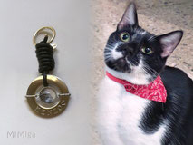 joya-artistica-memoria-recuerdo-con-pelo-animal-mi-miga-llavero-cuero-plata-ley-aro-acero-grabado-nombre-engaste-cristal-lupa-gato-kenzo