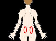 仙腸関節 体表から