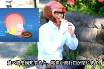 体重ヘルメット