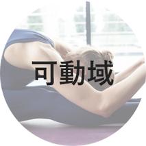 筋膜リリース,深部ファシア,パーソナルトレーニング,肩甲骨,肩,コリ,都立大学,プラスイー,東横線,腰痛,ストレートネック,反り腰,ヨガ