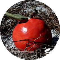 Töpfern Äpfel  Herbstdeko