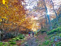 Guías de montaña Gredos