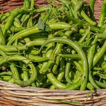Légumes proposés à la vente
