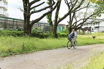 自転車での移動風景