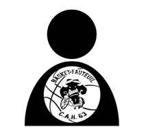 Logo de la section Basket-fauteuil