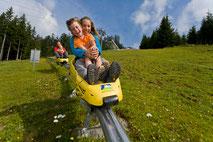 Ein Spaß füf die ganze Familie - die Sommerrodelbahn in Abtenau am Karkogel