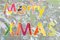 Grußkarte Weihnachten Merry Christmann