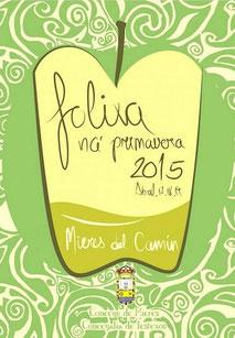 Cartel Folixa Na Primavera 2015 en Mieres