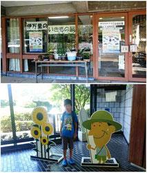 上:伊万里市歴史民俗資料館 下:県立九州陶磁文化館(有田町)