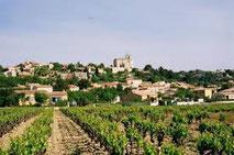 Ramonage Rochefort du Gard